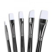 Paint Brushes (60)
